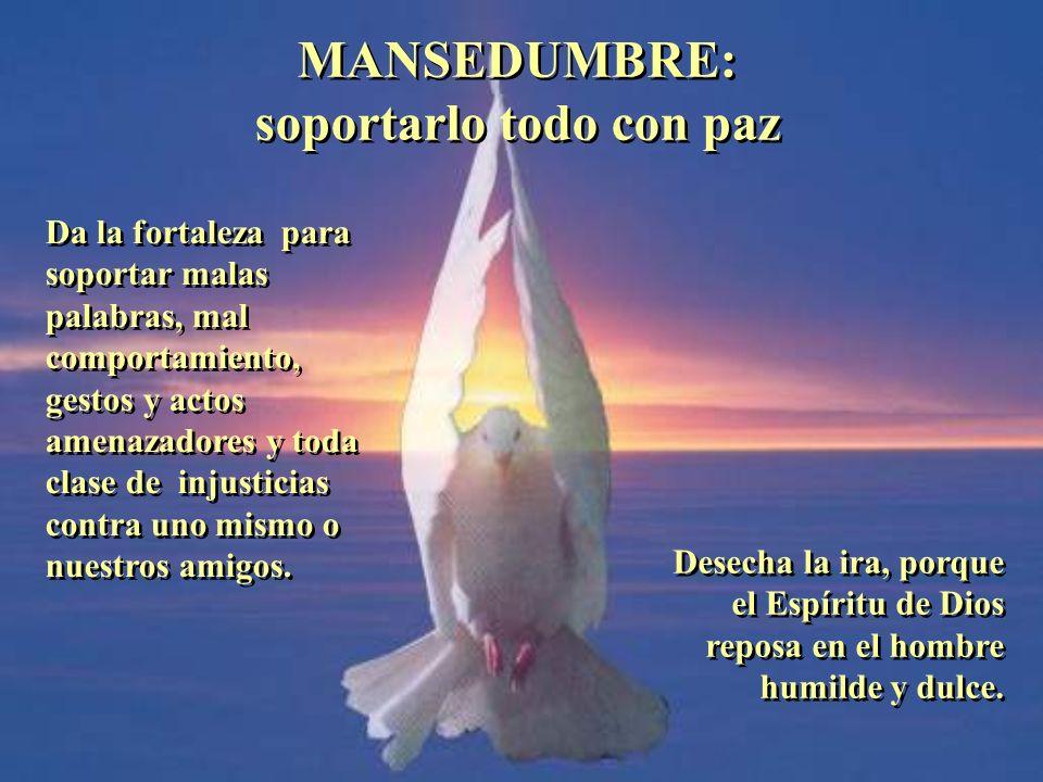 BENIGNIDAD: sentir la dulzura del Espíritu BENIGNIDAD: sentir la dulzura del Espíritu Transforma nuestras relaciones humanas en bendiciones divinas. V