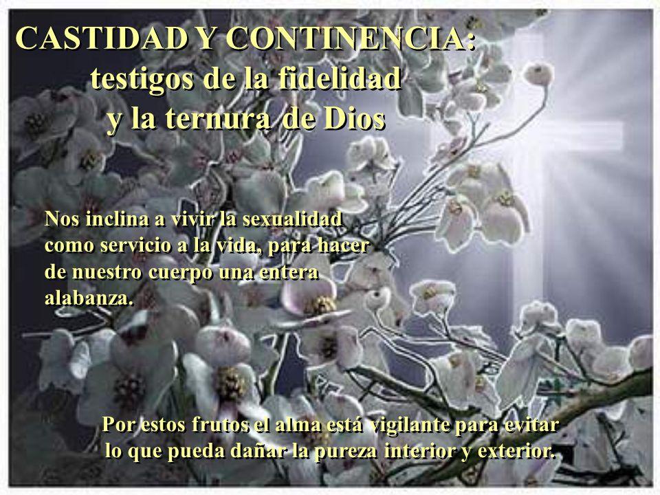 MODESTIA: el coraje de los humildes MODESTIA: el coraje de los humildes Por este fruto, el creyente sabe que sus talentos son regalo de Dios y los pon