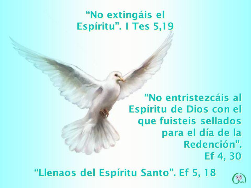 CASTIDAD Y CONTINENCIA: testigos de la fidelidad y la ternura de Dios CASTIDAD Y CONTINENCIA: testigos de la fidelidad y la ternura de Dios Por estos