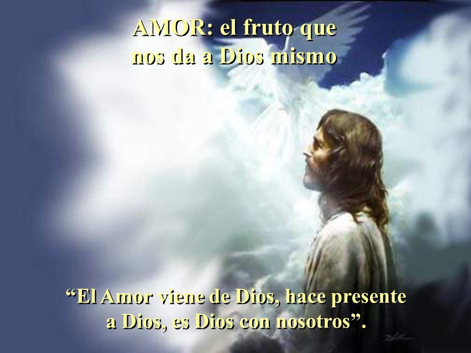 Cuando el alma es dócil al Espíritu Santo se convierte en árbol bueno que se da a conocer por sus frutos. Cuando el alma es dócil al Espíritu Santo se
