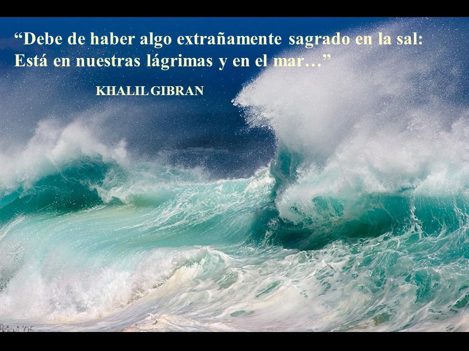 Debe de haber algo extrañamente sagrado en la sal: Está en nuestras lágrimas y en el mar… KHALIL GIBRAN