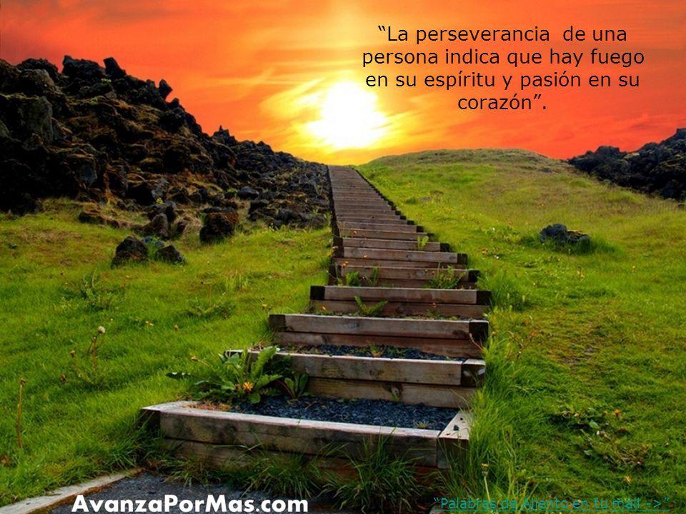 La perseverancia de una persona indica que hay fuego en su espíritu y pasión en su corazón.