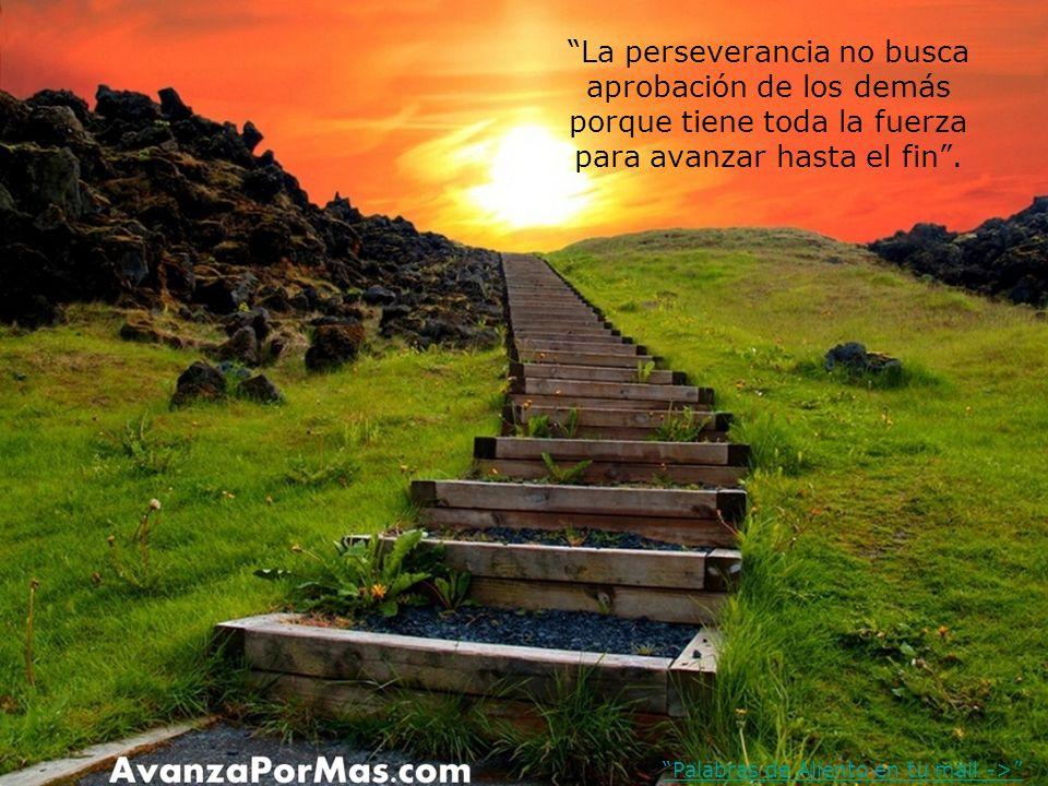 La perseverancia no busca aprobación de los demás porque tiene toda la fuerza para avanzar hasta el fin.