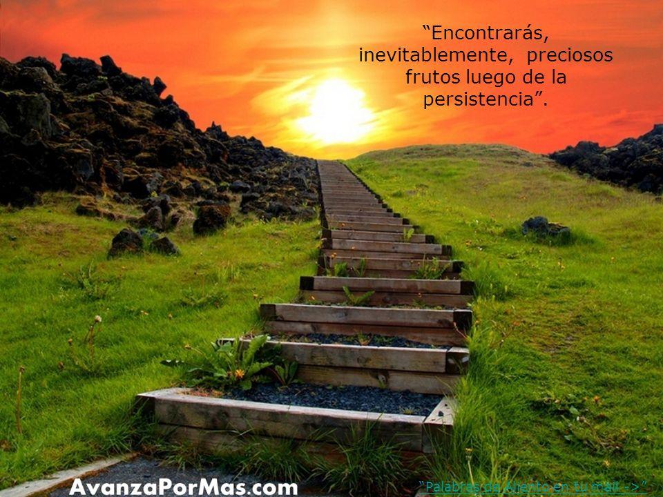 La perseverancia no busca aprobación de los demás porque tiene toda la fuerza para avanzar hasta el fin. Palabras de Aliento en tu mail ->