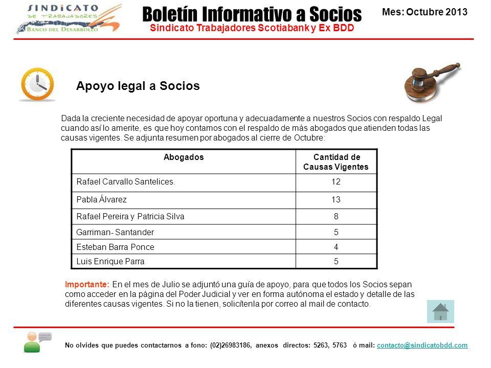Apoyo legal a Socios Abogados Cantidad de Causas Vigentes Rafael Carvallo Santelices.12 Pabla Álvarez13 Rafael Pereira y Patricia Silva8 Garriman- San
