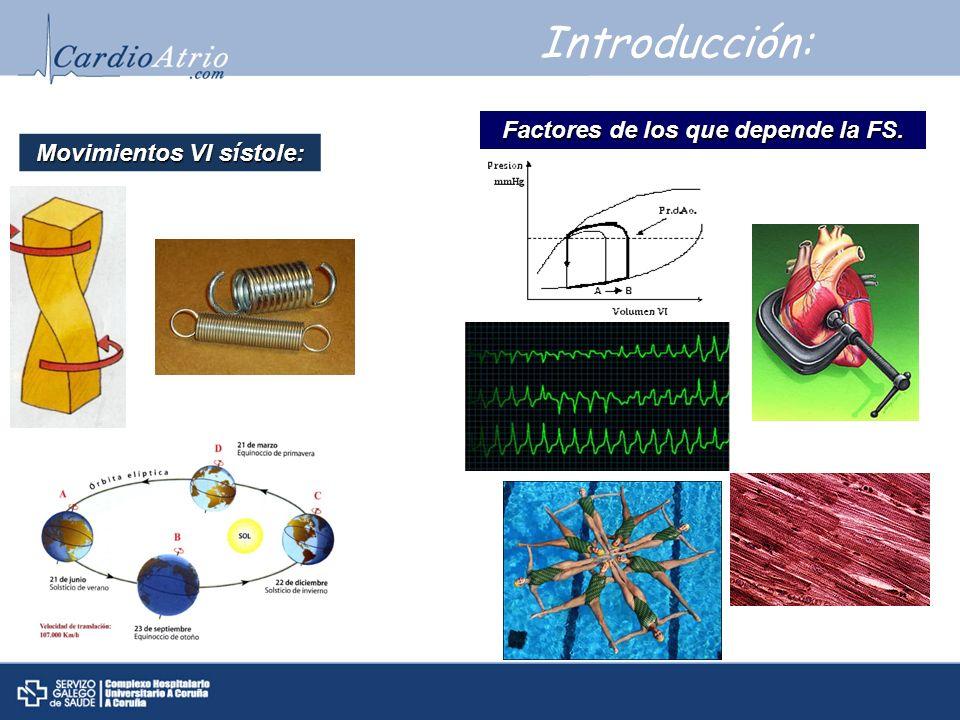 CÁLCULO FUNCIÓN GLOBAL VI Método visual.Modo M Modo 2 D Eco 3D.