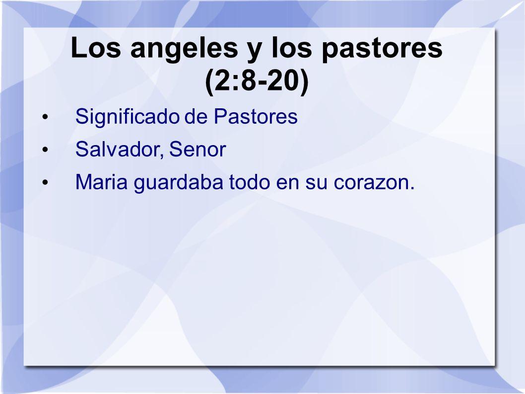 Los angeles y los pastores (2:8-20) Significado de Pastores Salvador, Senor Maria guardaba todo en su corazon.