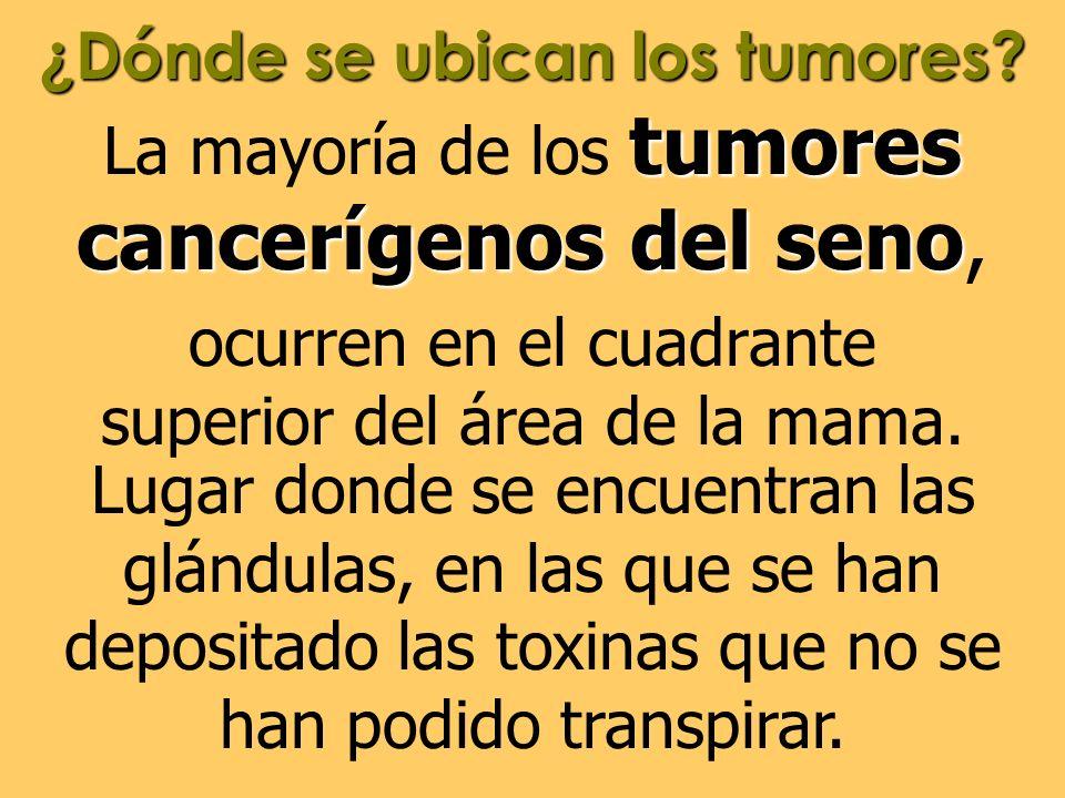 ¿Dónde se ubican los tumores? tumores cancerígenosdel seno La mayoría de los tumores cancerígenos del seno, ocurren en el cuadrante superior del área