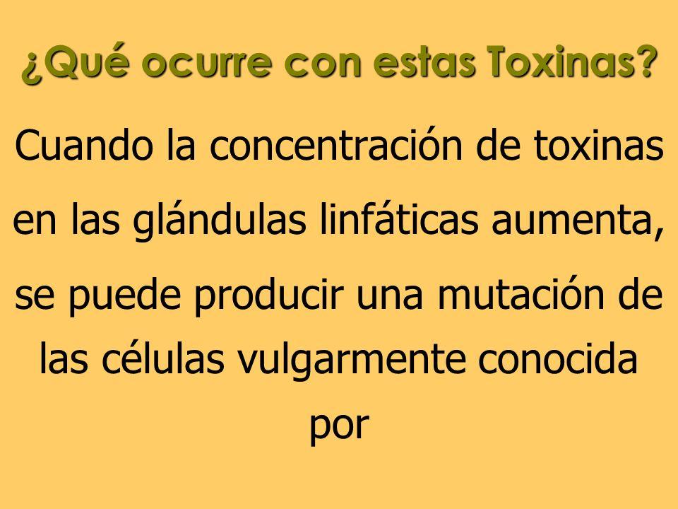 ¿Qué ocurre con estas Toxinas? Cuando la concentración de toxinas en las glándulas linfáticas aumenta, se puede producir una mutación de las células v