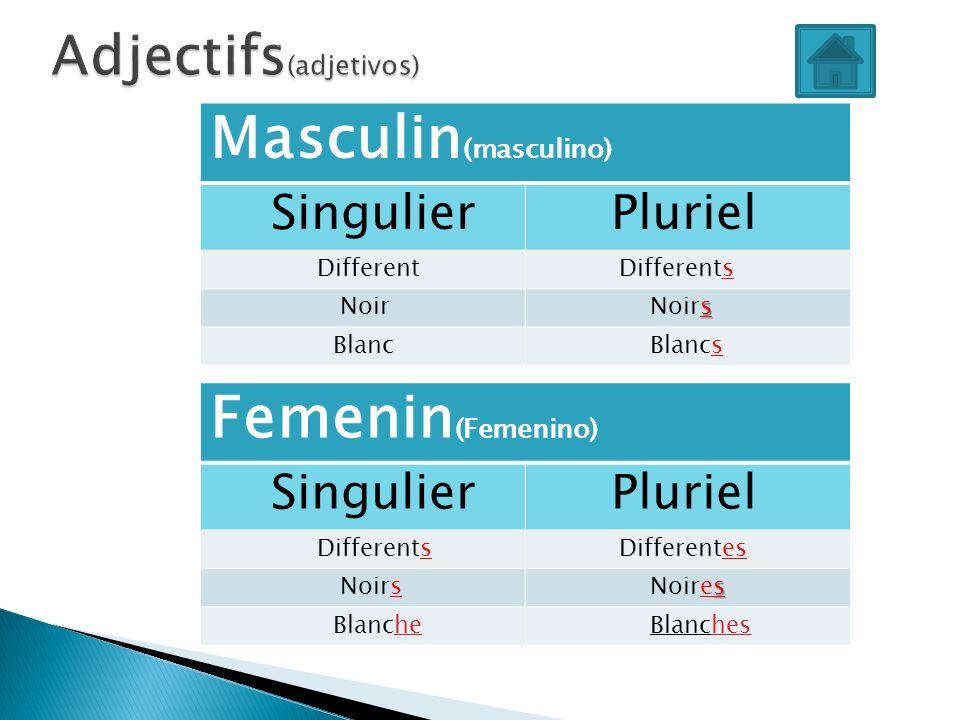 Masculin (masculino) Singulier Pluriel Different Differents Noir s Noirs Blanc Blancs Femenin (Femenino) Singulier Pluriel Differents Differentes Noir