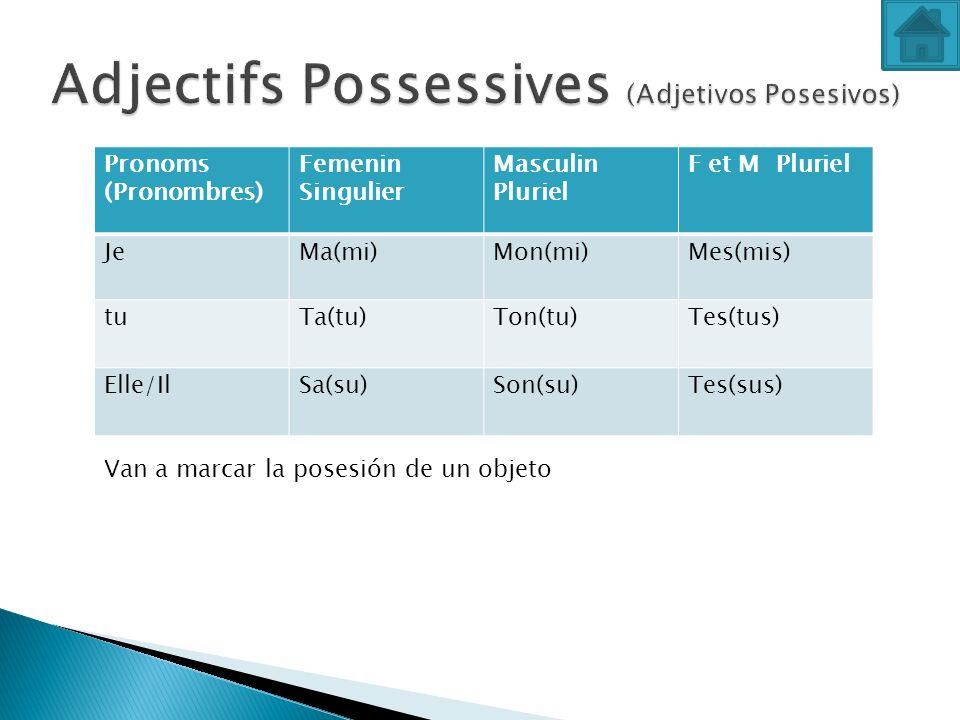 Pronoms (Pronombres) Femenin Singulier Masculin Pluriel F et M Pluriel JeMa(mi)Mon(mi)Mes(mis) tuTa(tu)Ton(tu)Tes(tus) Elle/IlSa(su)Son(su)Tes(sus) Va