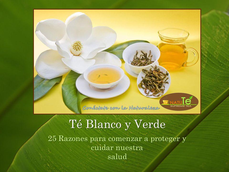 25 Razones para comenzar a proteger y cuidar nuestra salud Té Blanco y Verde