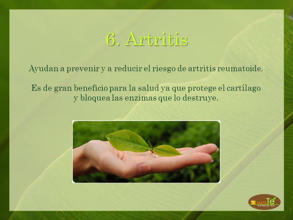 5. La Piel El antioxidante que poseen estos tés protegen la piel de los efectos dañinos de los radicales libres, que son los causantes de las arrugas