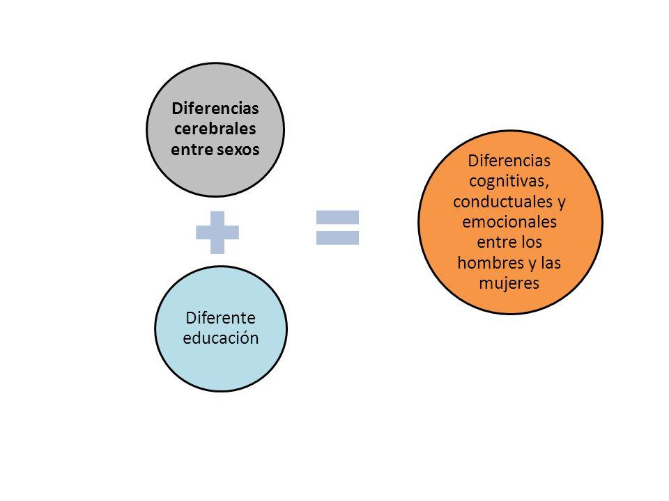 Diferencias cognitivas Los hombres destacan en:Las mujeres destacan en: Razonamiento matemáticoCálculo numérico Percepción espacialRapidez perceptiva