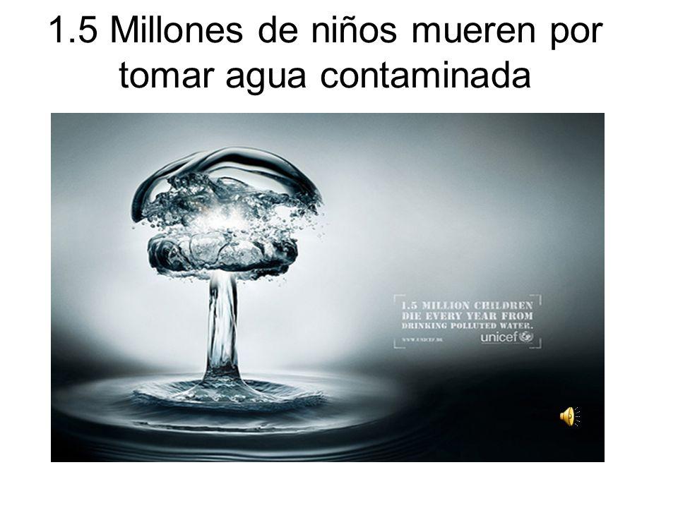 1.5 Millones de niños mueren por tomar agua contaminada
