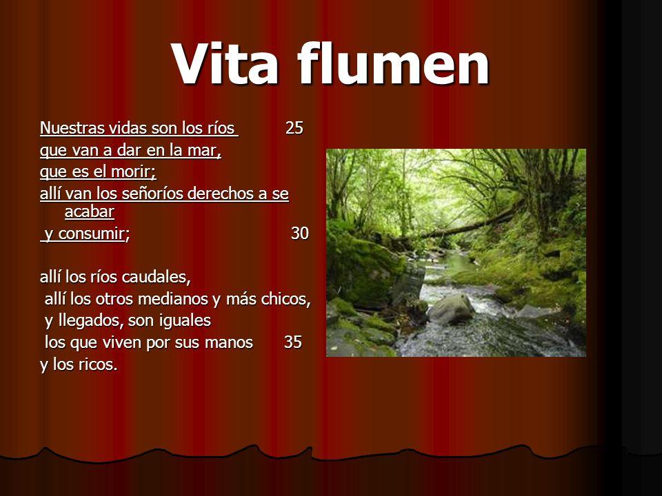 Vita flumen Nuestras vidas son los ríos 25 que van a dar en la mar, que es el morir; allí van los señoríos derechos a se acabar y consumir; 30 y consu