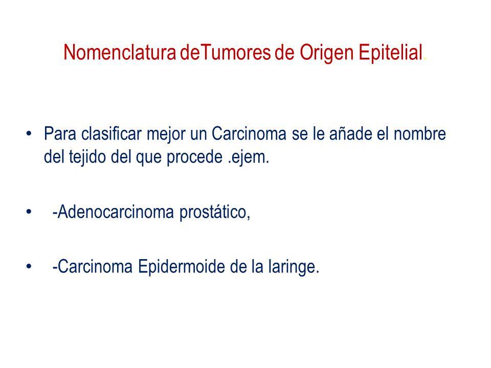 Nomenclatura deTumores de Origen Epitelial. Para clasificar mejor un Carcinoma se le añade el nombre del tejido del que procede.ejem. -Adenocarcinoma