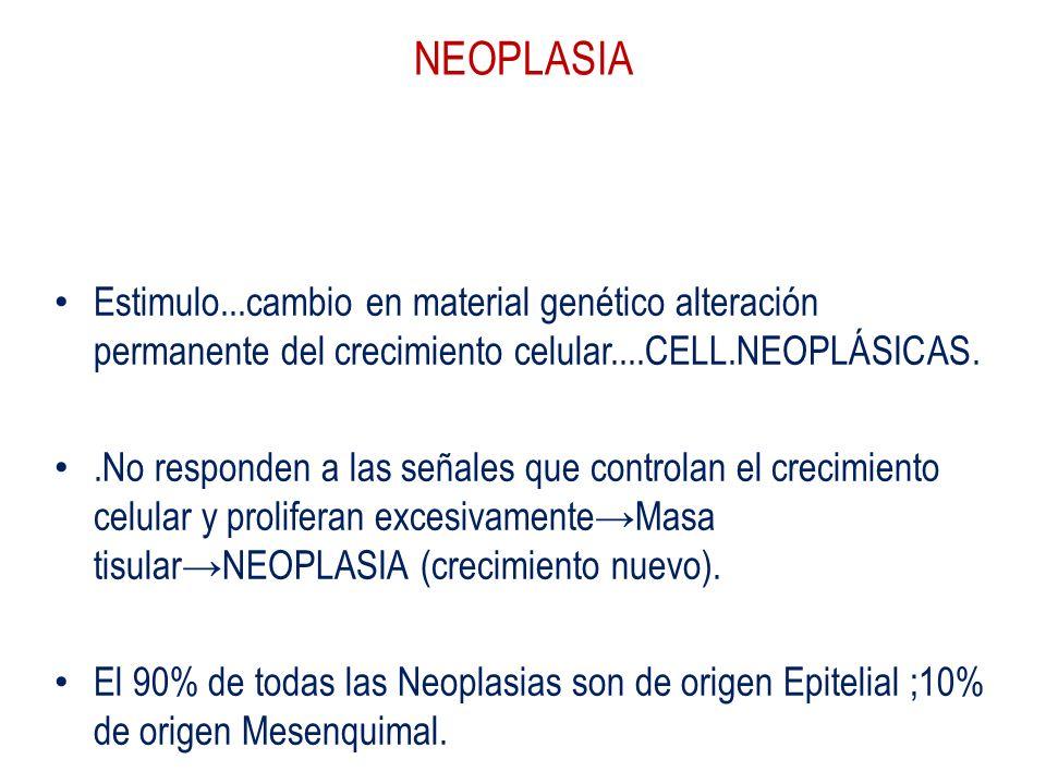 NEOPLASIA Respuesta adaptativa celular..reversible. Estimulo...cambio en material genético alteración permanente del crecimiento celular....CELL.NEOPL