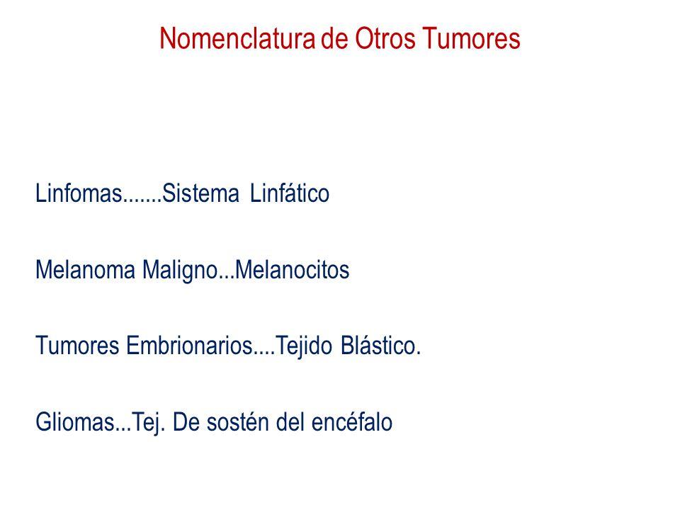 Nomenclatura de Otros Tumores Linfomas.......Sistema Linfático Melanoma Maligno...Melanocitos Tumores Embrionarios....Tejido Blástico. Gliomas...Tej.