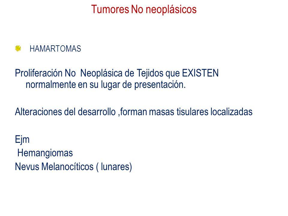 Tumores No neoplásicos HAMARTOMAS Proliferación No Neoplásica de Tejidos que EXISTEN normalmente en su lugar de presentación. Alteraciones del desarro