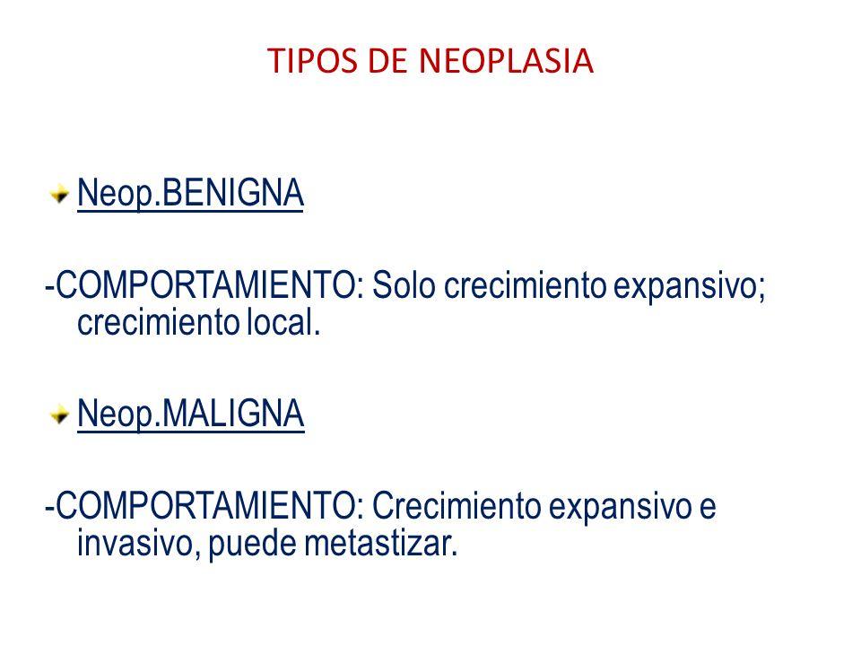TIPOS DE NEOPLASIA Neop.BENIGNA -COMPORTAMIENTO: Solo crecimiento expansivo; crecimiento local. Neop.MALIGNA -COMPORTAMIENTO: Crecimiento expansivo e