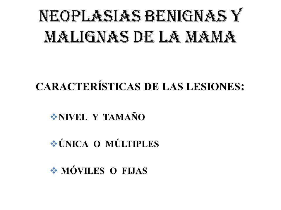 NEOPLASIAS BENIGNAS Y MALIGNAS DE LA MAMA CARACTERÍSTICAS DE LAS LESIONES : NIVEL Y TAMAÑO ÚNICA O MÚLTIPLES MÓVILES O FIJAS