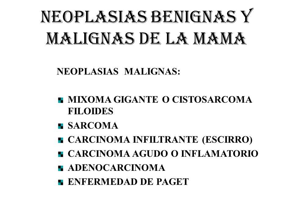 NEOPLASIAS BENIGNAS Y MALIGNAS DE LA MAMA NEOPLASIAS MALIGNAS: MIXOMA GIGANTE O CISTOSARCOMA FILOIDES SARCOMA CARCINOMA INFILTRANTE (ESCIRRO) CARCINOM