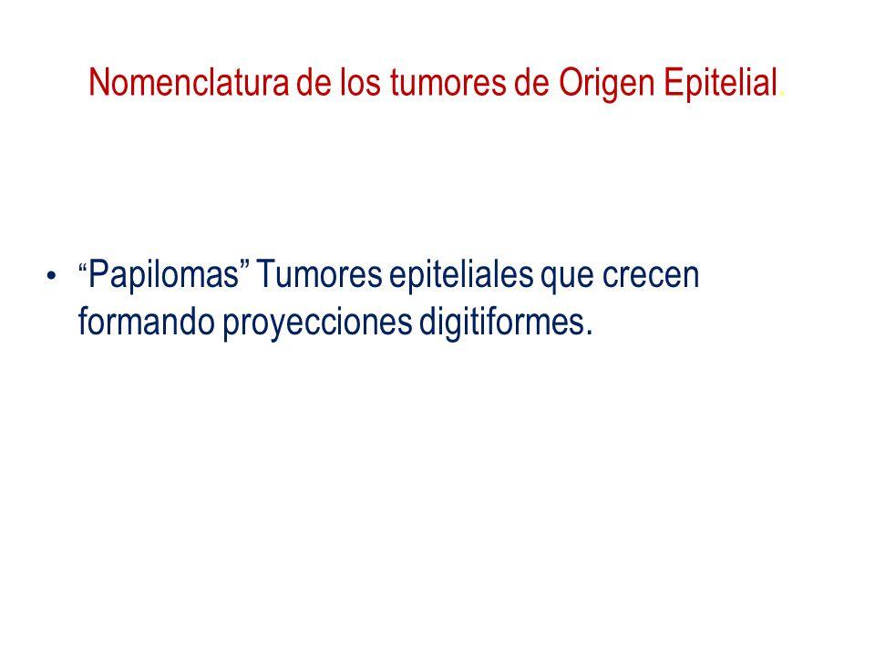 Nomenclatura de los tumores de Origen Epitelial. Papilomas Tumores epiteliales que crecen formando proyecciones digitiformes.