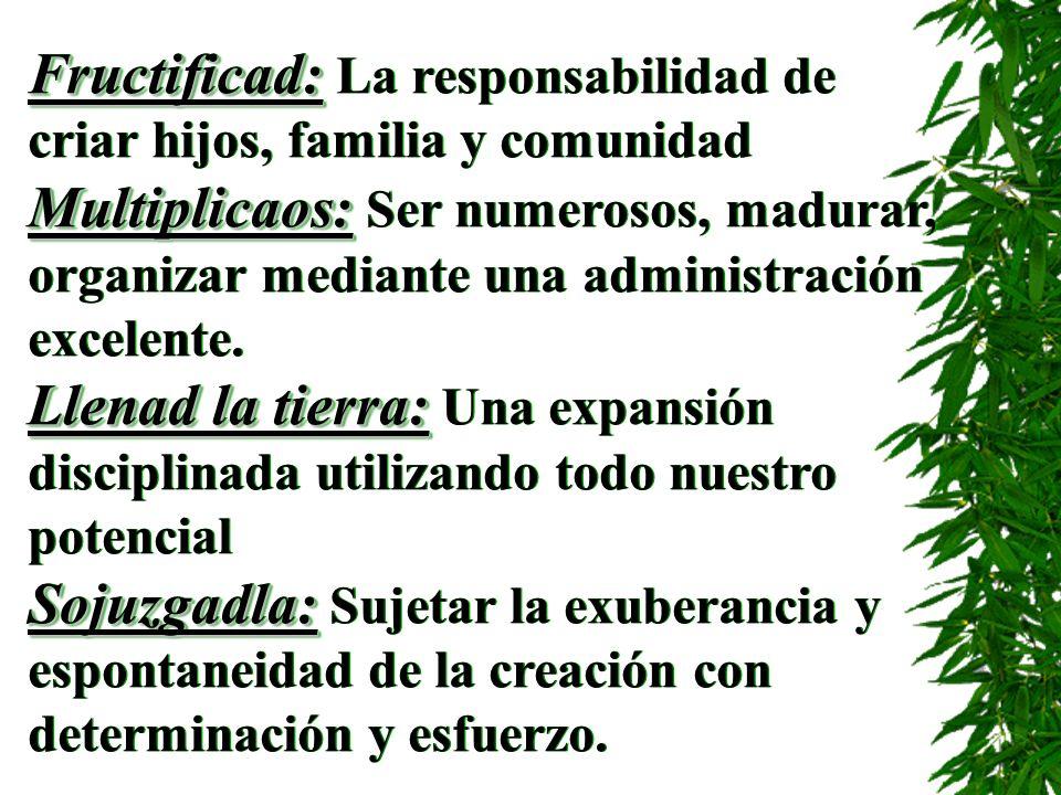 Fructificad: Fructificad: La responsabilidad de criar hijos, familia y comunidad Multiplicaos: Multiplicaos: Ser numerosos, madurar, organizar mediant