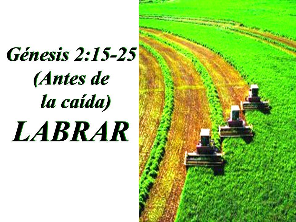 Génesis 2:15-25 (Antes de la caída) LABRAR Génesis 2:15-25 (Antes de la caída) LABRAR