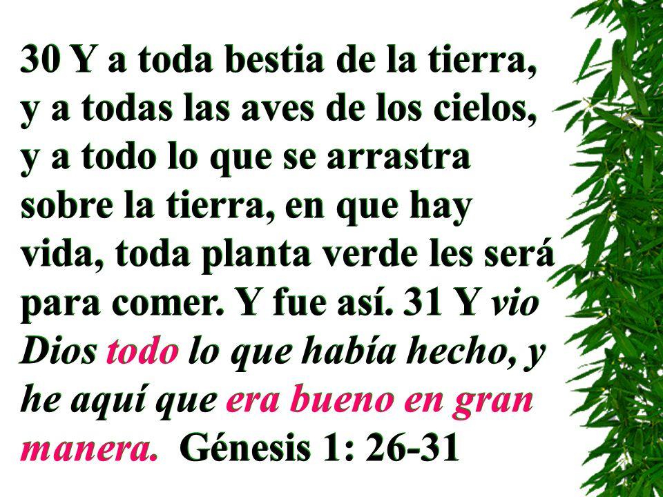 30 Y a toda bestia de la tierra, y a todas las aves de los cielos, y a todo lo que se arrastra sobre la tierra, en que hay vida, toda planta verde les