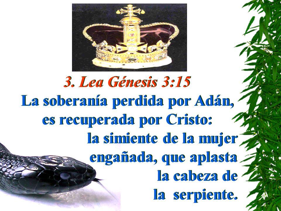 3. Lea Génesis 3:15 La soberanía perdida por Adán, es recuperada por Cristo: la simiente de la mujer engañada, que aplasta la cabeza de la serpiente.