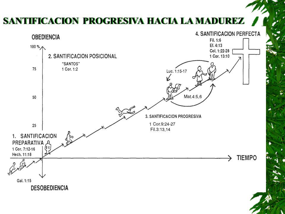 SANTIFICACION PROGRESIVA HACIA LA MADUREZ