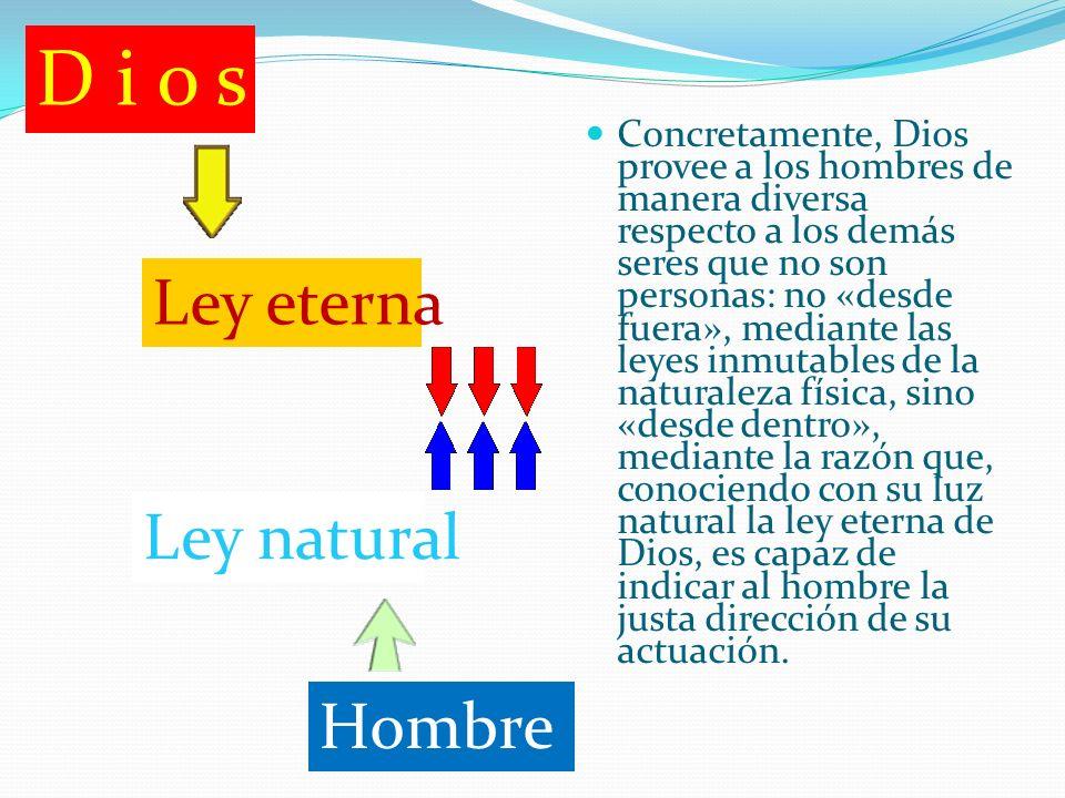 Concretamente, Dios provee a los hombres de manera diversa respecto a los demás seres que no son personas: no «desde fuera», mediante las leyes inmuta