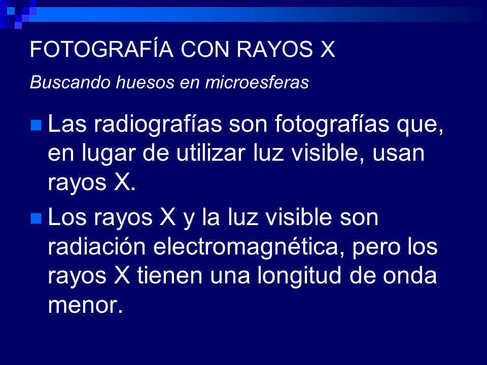 FOTOGRAFÍA CON RAYOS X Buscando huesos en microesferas Las radiografías son fotografías que, en lugar de utilizar luz visible, usan rayos X.