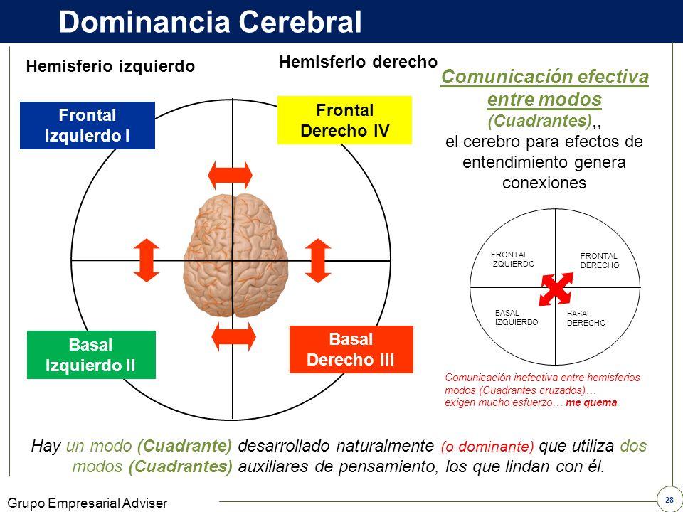 27 Grupo Empresarial Adviser Dominancia Cerebral y sus funciones Mente Consciente Piensa abstracto Memoria a corto plazo Piensa en el pasado y el pres