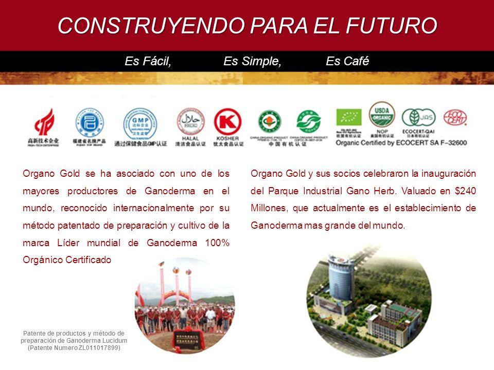 CONSTRUYENDO PARA EL FUTURO Es Fácil, Es Simple, Es Café Organo Gold se ha asociado con uno de los mayores productores de Ganoderma en el mundo, recon