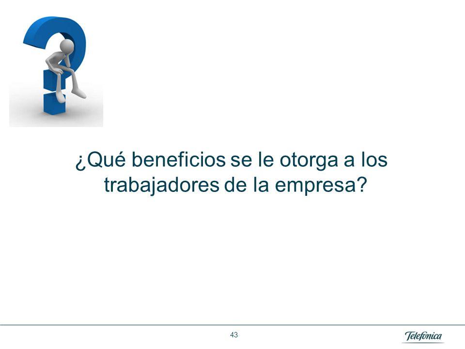 Área: Lorem ipsum Razón Social: Telefónica ¿Qué beneficios se le otorga a los trabajadores de la empresa? 43