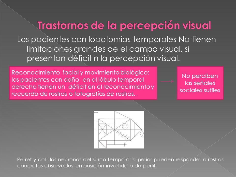 Los pacientes con lobotomías temporales No tienen limitaciones grandes de el campo visual, si presentan déficit n la percepción visual. Reconocimiento