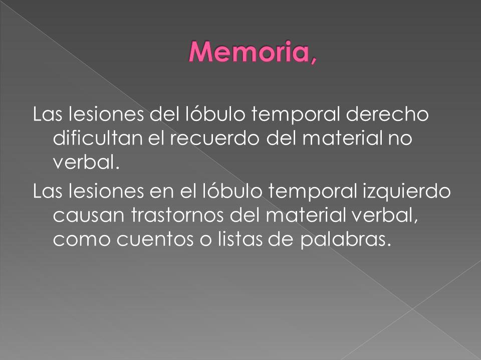 Las lesiones del lóbulo temporal derecho dificultan el recuerdo del material no verbal. Las lesiones en el lóbulo temporal izquierdo causan trastornos