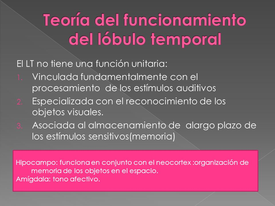 El LT no tiene una función unitaria: 1. Vinculada fundamentalmente con el procesamiento de los estímulos auditivos 2. Especializada con el reconocimie