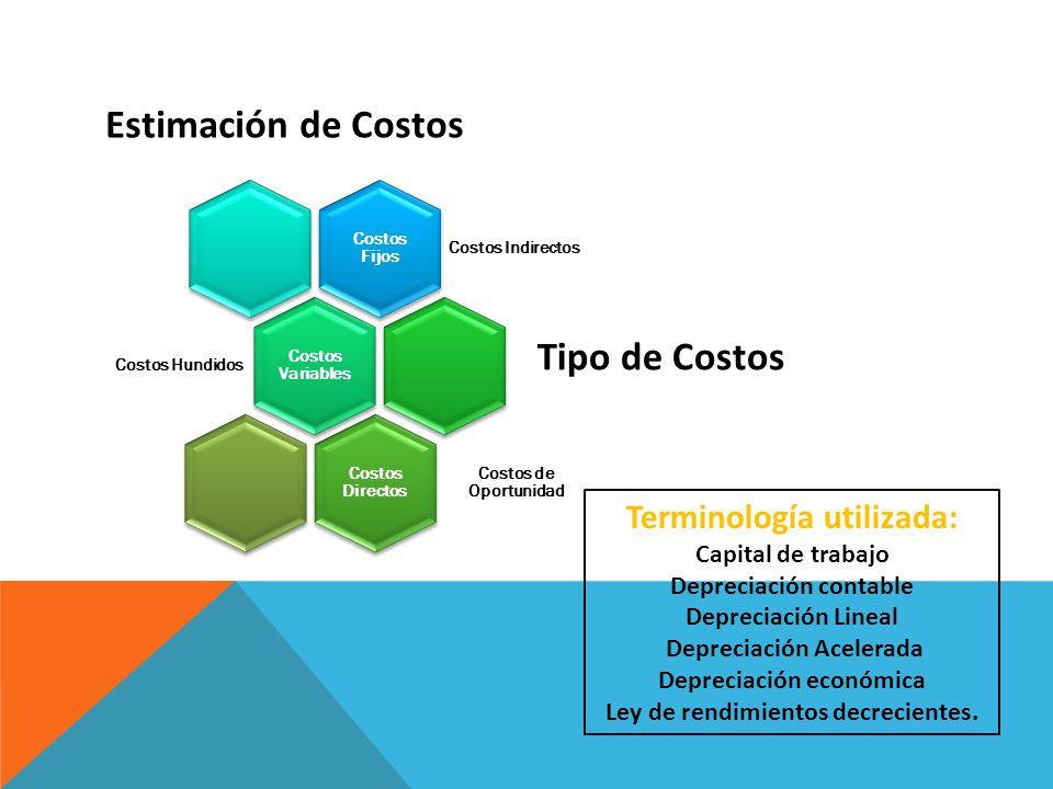 Terminología utilizada: Capital de trabajo Depreciación contable Depreciación Lineal Depreciación Acelerada Depreciación económica Ley de rendimientos