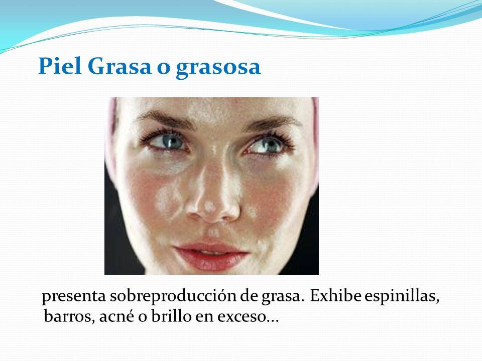 Piel Grasa o grasosa presenta sobreproducción de grasa. Exhibe espinillas, barros, acné o brillo en exceso...