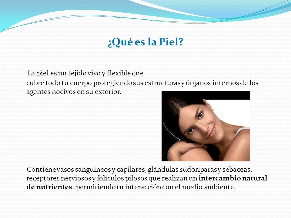 ¿Qué es la Piel? La piel es un tejido vivo y flexible que cubre todo tu cuerpo protegiendo sus estructuras y órganos internos de los agentes nocivos e