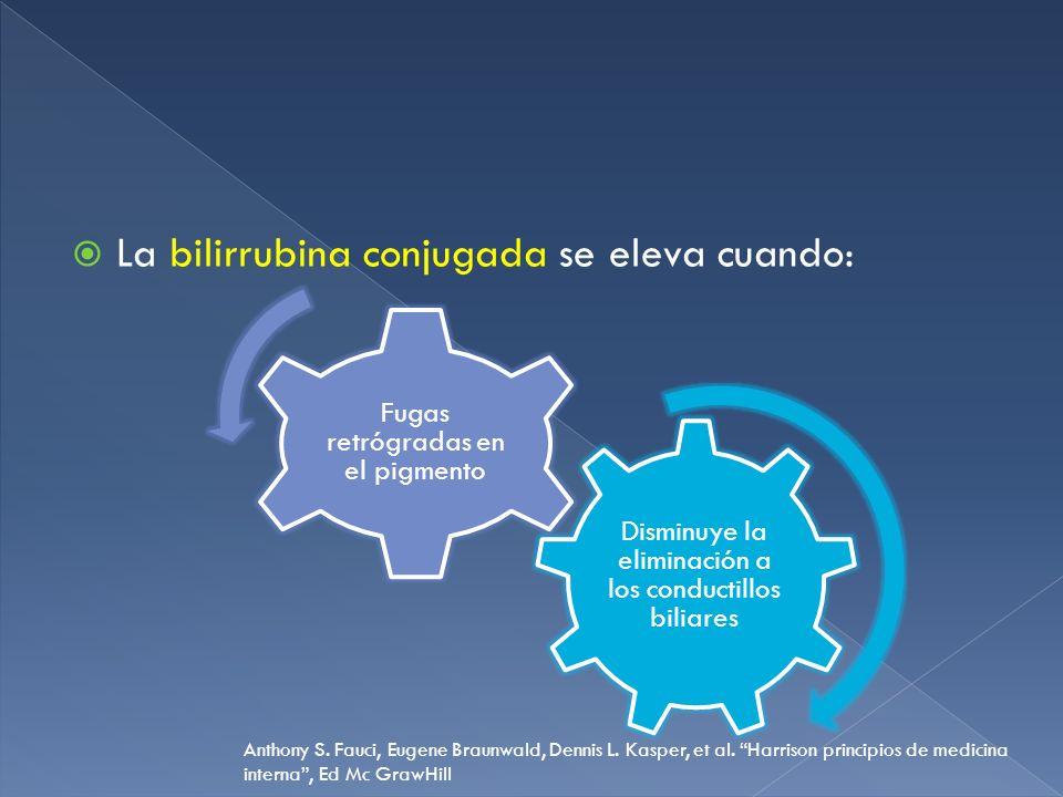 La bilirrubina conjugada se eleva cuando: Disminuye la eliminación a los conductillos biliares Fugas retrógradas en el pigmento Anthony S. Fauci, Euge