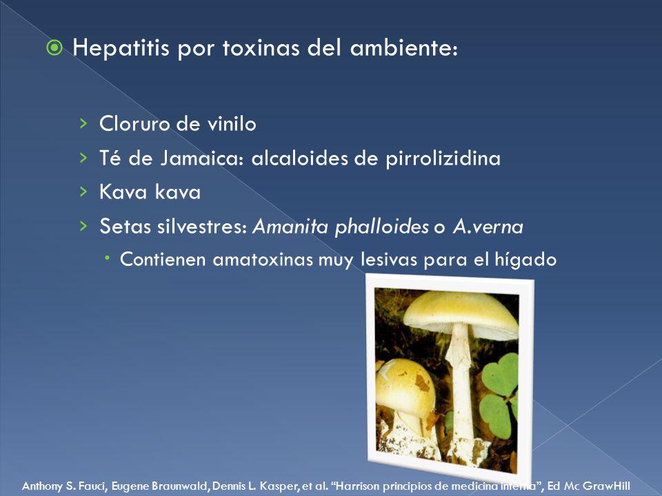 Hepatitis por toxinas del ambiente: Cloruro de vinilo Té de Jamaica: alcaloides de pirrolizidina Kava kava Setas silvestres: Amanita phalloides o A.ve