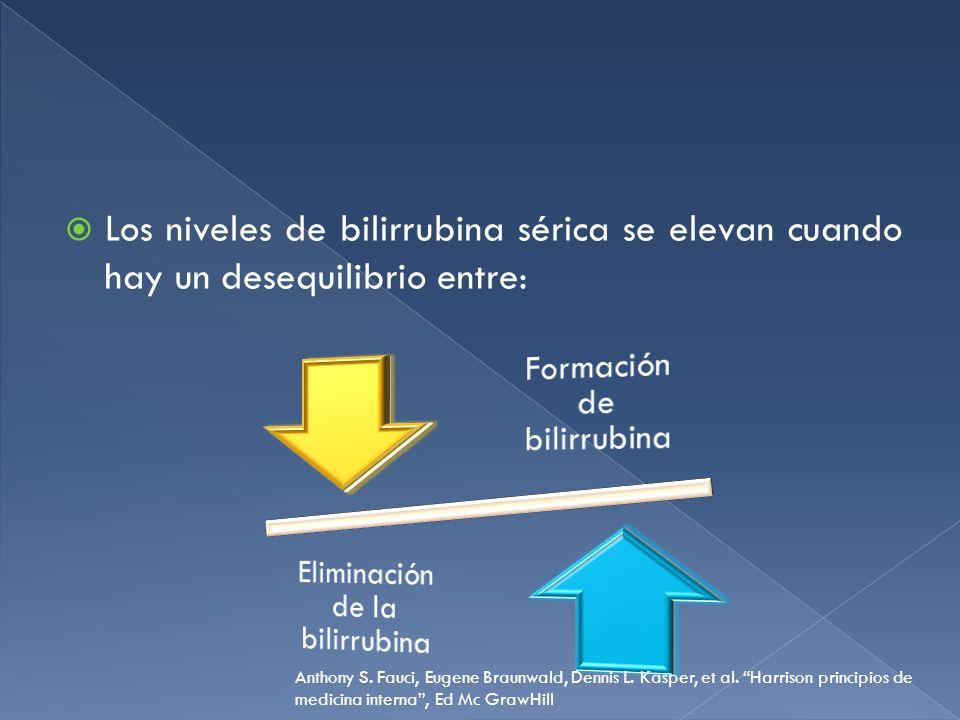 Los niveles de bilirrubina sérica se elevan cuando hay un desequilibrio entre: Anthony S. Fauci, Eugene Braunwald, Dennis L. Kasper, et al. Harrison p