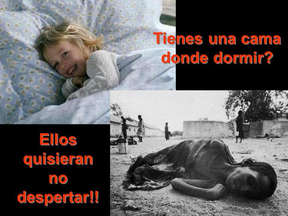 Tienes una cama donde dormir? Ellos quisieran no despertar!!