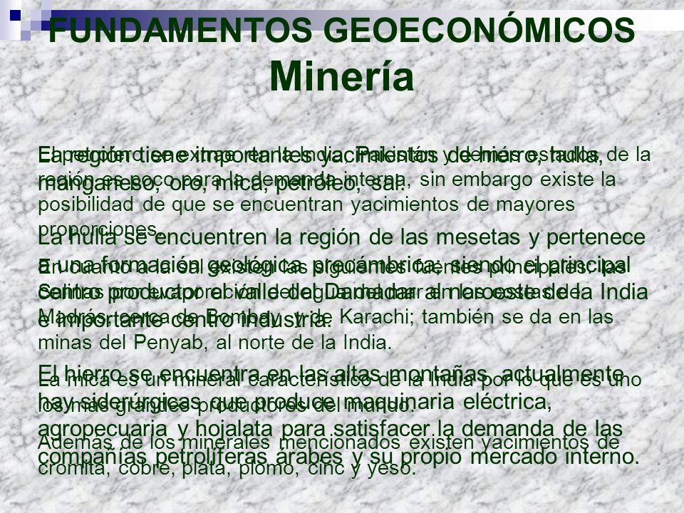 FUNDAMENTOS GEOECONÓMICOS Minería La región tiene importantes yacimientos de hierro, hulla, manganeso, oro, mica, petróleo, sal. La hulla se encuentre