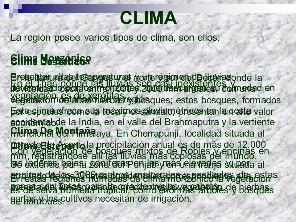 CLIMA La región posee varios tipos de clima, son ellos: Clima Monzónico Presentar altas temperaturas y un régimen de lluvias determinado por los monzo